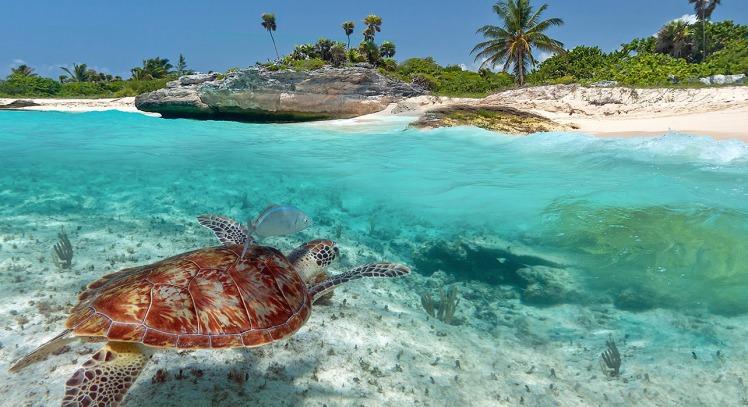 5-slide-vanuatu-turtle-beach-pano